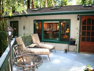 Redwood Rendez-vous Romantic Get-away! Hot Tub, Skylights, Wood stove! - Dillon Beach vacation rentals