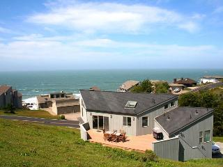 Selkie Seas-Newly build beauty! A Dillon Fav!! - Dillon Beach vacation rentals