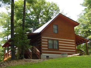 Honeymoon Cabin/Secluded/WiFi/Hot Tub/Campfire Pit - Blue Ridge Mountains vacation rentals
