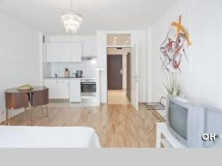 Studio City centre Anilin - Vienna City Center vacation rentals