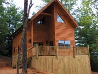 Our little piece of paradise in the Blue Ridge Mountains - NC Blue Ridge Parkway Cabin STAY 2 Get 1 FREE - Blowing Rock - rentals