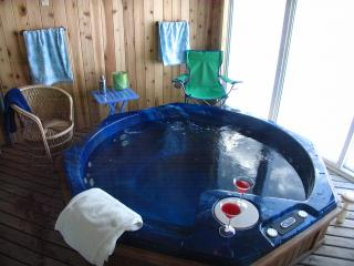 Home w/Hot Tub-Golf, Rafting, Fishing, Adventure ! - Blakeslee vacation rentals
