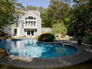 5 Min to Bridgehampton n Sag Harbor 8 Min Ocean - Hamptons vacation rentals