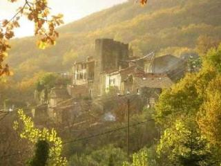 Stone gite in the heart of a rural village. - Saint-Privat vacation rentals