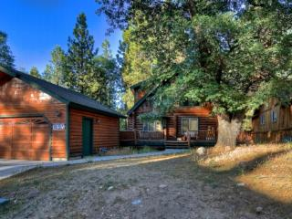 #3: Five Star Snow Summit Big Bear Log Cabin - Big Bear Lake vacation rentals