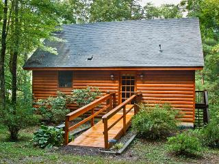 Little Cabin in the Woods - Mineral Bluff vacation rentals