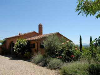 La Chianina - San Gimignano vacation rentals