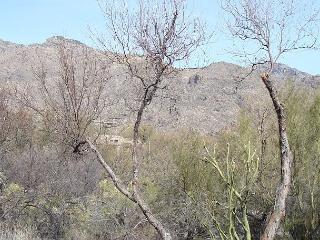 2 Bedroom 2 Bath First Floor Newly Furnished with Stunning Mountain Views - Tucson vacation rentals