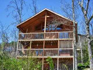 Large Mountain Cabin on Bluff Mountain, Just Outside Pigeon Forge!  ALBEAR - Sevierville vacation rentals