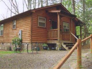Garden of Eden Cabins - Cosby vacation rentals