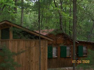 Pentwater cabin is half mile from Lake Michigan - Pentwater Cabin - Pentwater - rentals