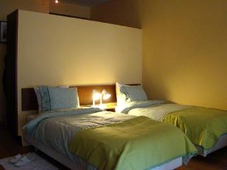 Studio apartment in Porto historic city centre - Porto vacation rentals