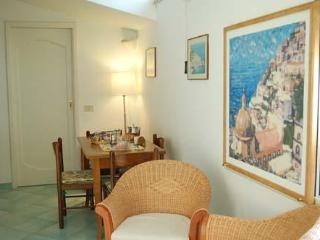 Nice apartment in the hearth of Positano! - Positano vacation rentals