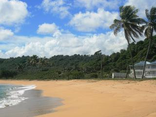 MoonFish Beach Houses, Pool, in Friendly Grenada! - Grenada vacation rentals