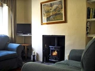 FAENOL, pet friendly, country holiday cottage, with a garden in Llan Ffestiniog, Ref 4549 - Gwynedd- Snowdonia vacation rentals