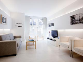 Georgeus modern design apt near the beach WIFI - San Sebastian - Donostia vacation rentals