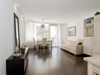 **Entire Apartment for your holidays** - Amsterdam vacation rentals