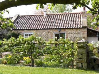 THE SUN HOUSE, romantic, luxury holiday cottage, with a garden in Ferrensby, Ref 5251 - Ferrensby vacation rentals
