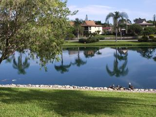 Location Location- Panoramic Lake View off 5th Ave - Naples vacation rentals