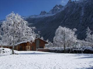 Central Chamonix chalet - Chamonix vacation rentals