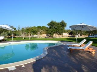 VILLA AMATA with pool - Puglia vacation rentals