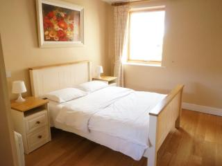 Dublin City Centre One bedroom Apartments -sleep 4 - County Dublin vacation rentals
