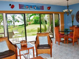 Ground floor, highly desirable, beachfront - Kapaa vacation rentals