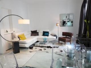 Hoche 2 - Cannes vacation rentals