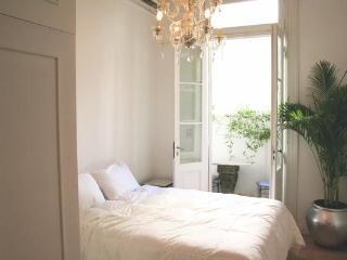 Perfect French style Recoleta studio: balcony/WiFi - Buenos Aires vacation rentals