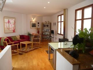 El Artista, beautiful apartment in Grazalema - Grazalema vacation rentals