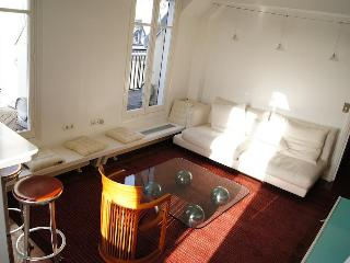 Suite Champs Elysees - The name says it all - Paris vacation rentals
