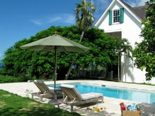 Hilltop Buccaneer Hill overlooking Cupid's Cay, walking distance to pink sand beaches - Eleuthera vacation rentals