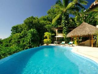 Casa Kalista - Tropical Paradise, Exquisite Three Story Waterfall, Infinity Pool - Mismaloya vacation rentals