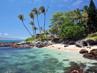Swim, Snorkel and Kayak at this Lovely Beachfront Estate  - Paradise Cove - Napili-Honokowai vacation rentals