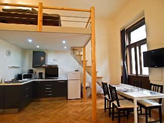 Design and spacious- 2 minutes walk from Old Town Square - Prague vacation rentals