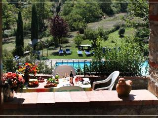2BR /1BA apartment - Castellina In Chianti vacation rentals