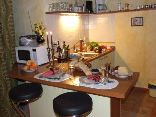 Cosy 1BR/1 BA suite/ studio - Castellina In Chianti vacation rentals