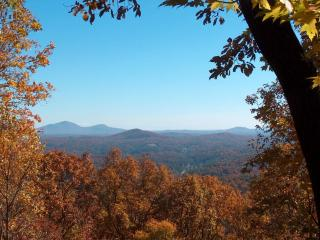 Cedar Mountain Chalet - 3 BR with Mt. Yonah view - Dahlonega vacation rentals