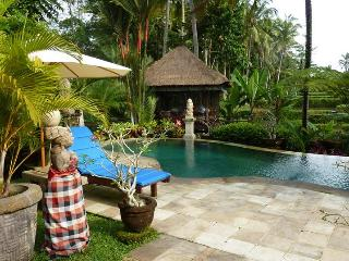 As a  private guest in Villa Orchid Bali - Ubud vacation rentals