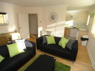Windsor town centre apartment. Near Legoland. - Windsor and Maidenhead vacation rentals