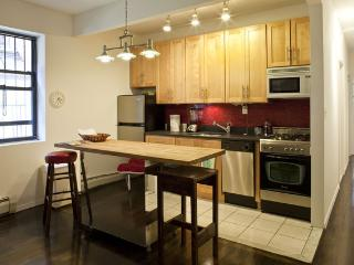 Furnished Garden Condo NYC Apartment-location! - New York City vacation rentals