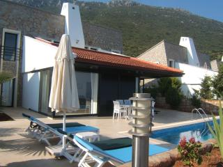 Rustic Luxury-Yenikoy Villas-Pvt Pools & SeaViews - Turkish Mediterranean Coast vacation rentals