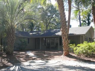 Friendly Flamingo New Pool, Just Steps to the Sand - Hilton Head vacation rentals