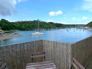 Pet Friendly Holiday Cottage - Caledonia House, Lower Town, Fishguard - Fishguard vacation rentals