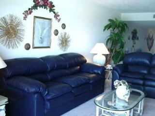 Dolphins Say...Don't Miss This One! - Indian Shores vacation rentals