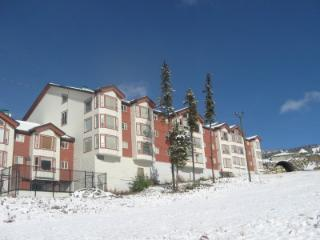 Eagles A - Big White vacation rentals