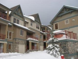 Tree Tops B - Big White vacation rentals