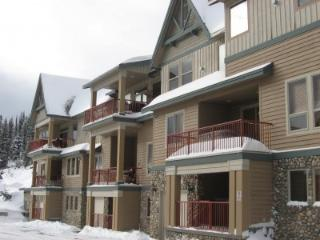 Tree Tops C - Big White vacation rentals