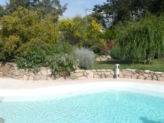 villa  with pool  Corsica - Corsica vacation rentals
