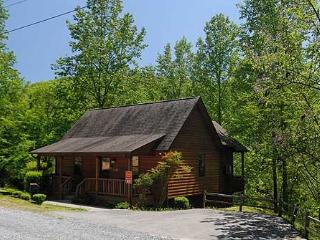 WATER'S EDGE - Sevierville vacation rentals